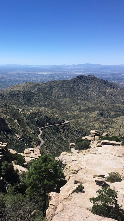 "The 27-mile paved Catalina Highway Scenic Drive from northeast Tucson to the 9,157-foot peak of Mount Lemmon has been called the ""biological equivalent"" of driving from the deserts of Mexico to Canada's fir forests. Photo by MeLinda Schnyder."
