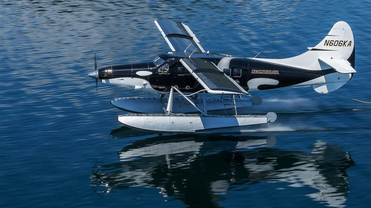 Kenmore Air Harbor's 'Wild Orca' turbine Otter wears an eye-catching black and white paint scheme that seaplane pilots Anna Gullickson and Michael Hays hope can raise awareness for the often misunderstood killer whale. Photo courtesy Chris Teren/WildOrca.org.