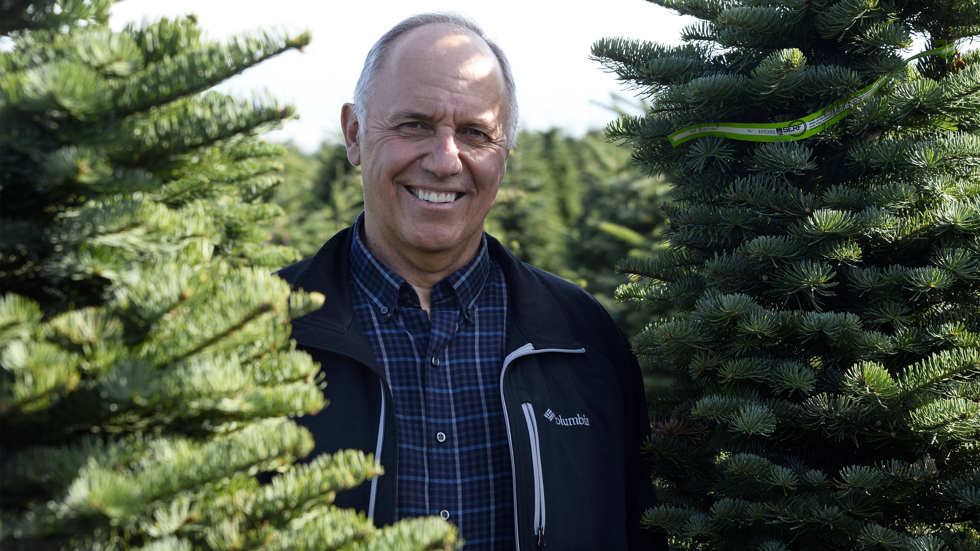 Noble Mountain Tree Farm's general manager and Rusty Pilot Bob Schaefer considers the tree farming firm's Noble, Douglas, and Nordmann fir trees as his 'babies.' Oregon's Christmas tree business accounts for more than $109 million in economic benefits to the state, according to a 2007 study. Photo by David Tulis.