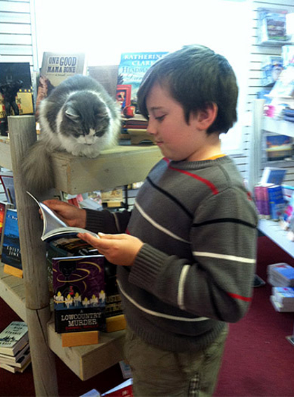 Nicholas shares a book with Emily Grace, the friendly resident feline at the Edisto Bookstore. Photo courtesy Edisto Bookstore.