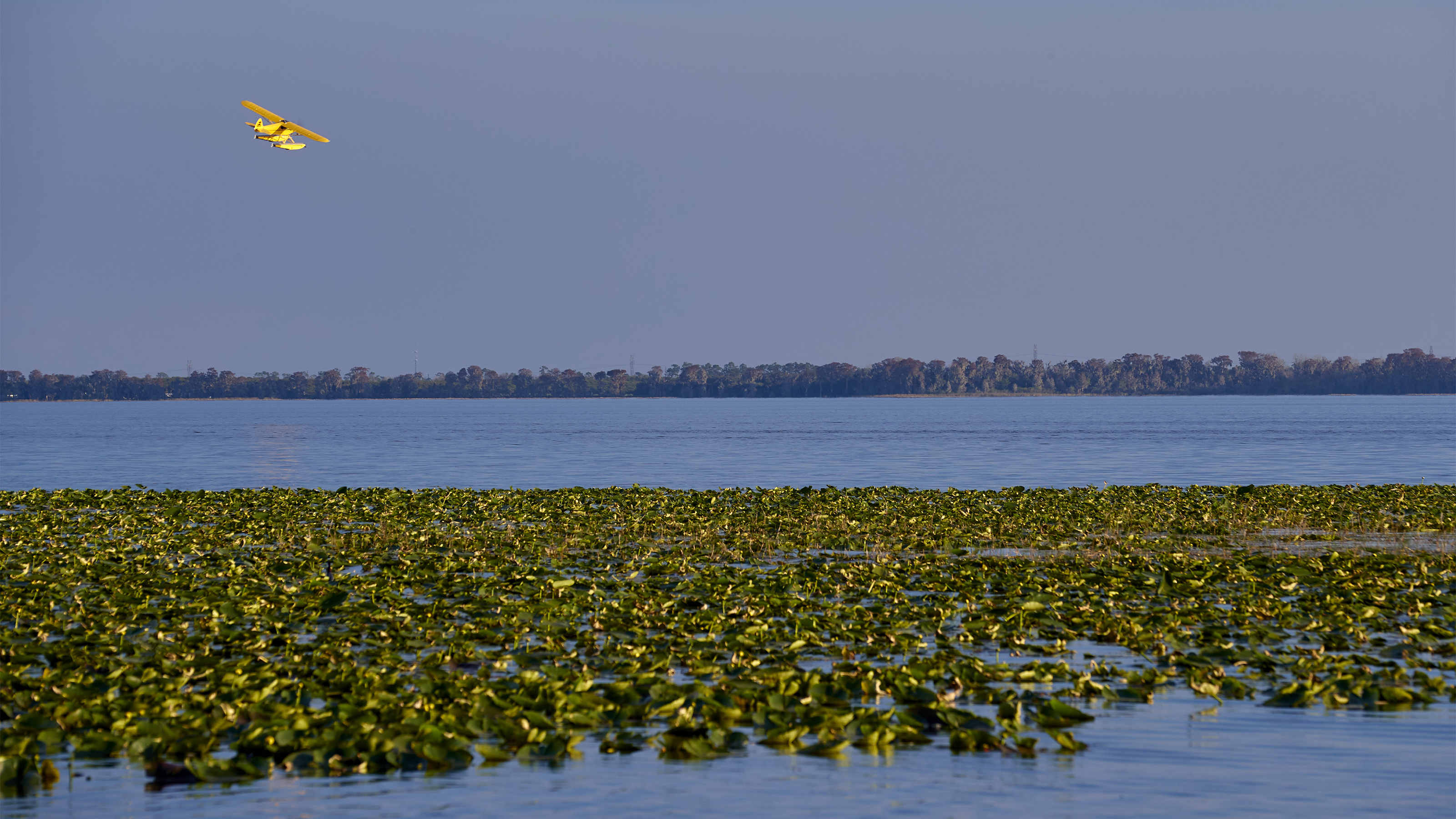 AOPA's Sweepstakes Super Cub flies over Florida's Lake Pierce with its new Wipaire 2100 amphibious floats.