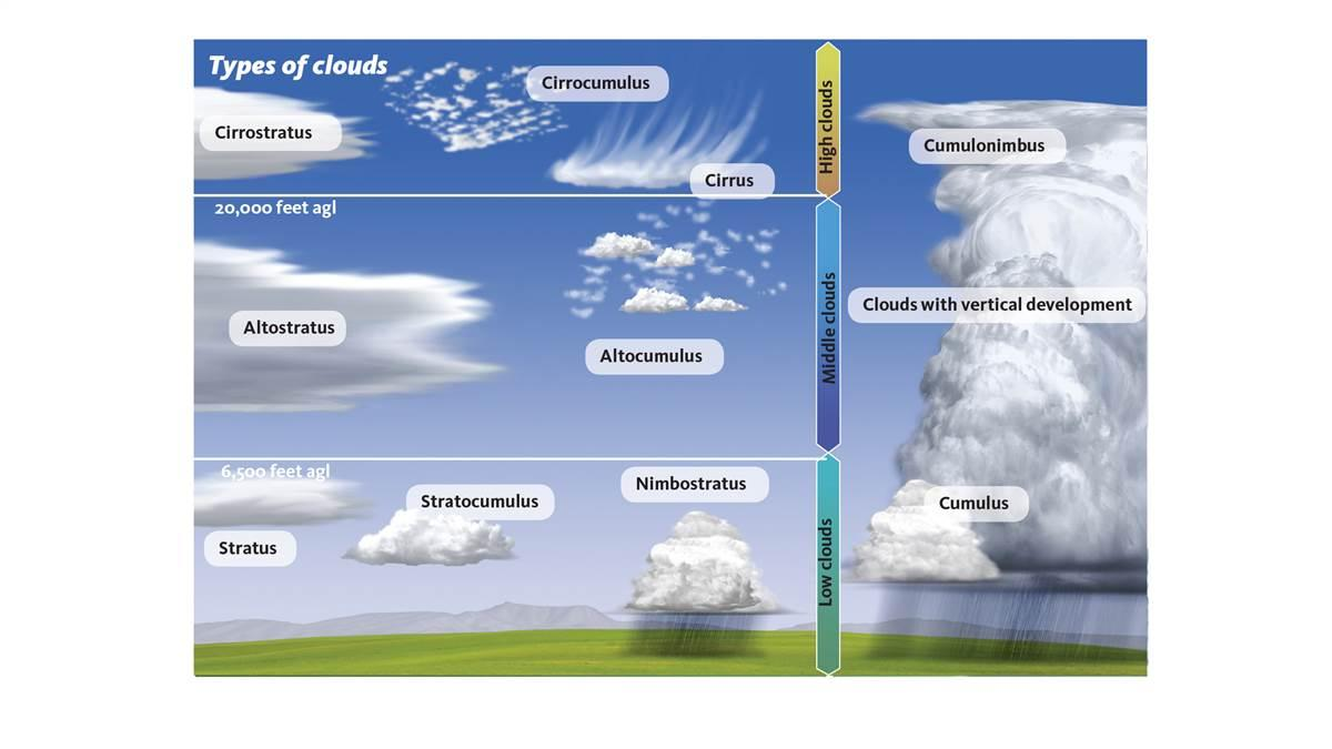 Image result for cloud types
